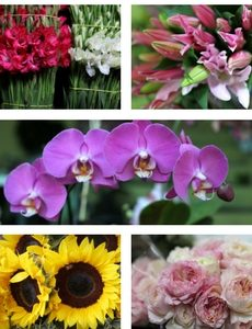 Cheapest delivered flowers flores