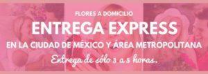 Enviar Flores a Domicilio en la Ciudad de México